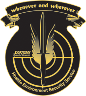 Hostile Environment Security Service